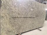 中国のベージュ花こう岩のカウンタートップおよびタイルのための高貴なヒスイの平板