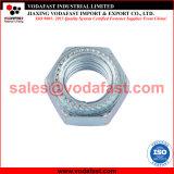 L'écrou hexagonal en acier galvanisé avec la rondelle dentelée