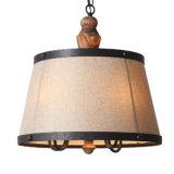 Chinesisches Hersteller-Eisen-Material, das dekorative Lampe hängt