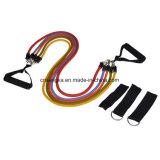 11pcs Expander des bandes de caoutchouc de la formation de la méthode Pilates Fitness Gym Sports Accessoires