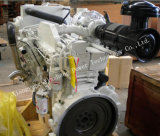 海洋の推進力のための新しい本物6CTA8.3-M205 Dcec Cumminsのディーゼル機関