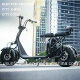 新しい2単位は市場のスクーターの熱い販売と電池を除去する