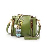 2017의 디자인 어깨에 매는 가방 선하 증권과 가진 간단한 형식 물통 부대