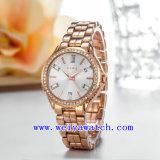 Polshorloges van de Vrouw van het horloge de Aanpassende (wy-019B)