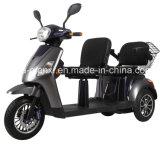 Paar die Elektrische Autoped reizen Met drie wielen