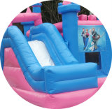 Приятный дизайн дешевые замороженные тема надувные Bouncer замки оптовая торговля