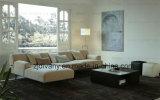 Sofà moderno del tessuto della mobilia impostato (D-79)