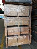 Un traitement aisé d'usure ignifugé résistant résistant à la chaleur du grain du bois stratifié HPL avec diverses couleurs