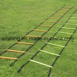 フットボールのサッカーは速度のトレーニングの敏捷の梯子を遊ばす