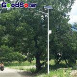 Lumière solaire de DC12/24V 20W-80W pour le réverbère solaire