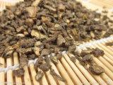 100% 자연적인 Bupleurum 추출 또는 Saikosaponins
