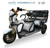Fabbrica della Cina lungamente un triciclo Handicapped delle 3 della rotella di mobilità sedi del motociclo 3