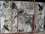 얼음 녹색 Polished Tiles&Slabs&Countertop 대리석