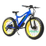 무브러시 모터 관제사 48V 500W 뚱뚱한 E 자전거 전기 자전거