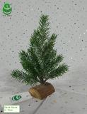 albero di Natale artificiale del PE di 0.2-0.3m per la decorazione - Woodrect & ghiaccio