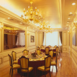 W/R/G/B de LEIDENE van de kleur SMD2835 Lichten van de Strook voor Hotel/Markt/Zaal/de Decoratie van de Bouw