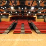 赤い装飾されたベンチが付いているスペースによってカスタマイズされる引き込み式の特別観覧席
