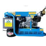 300bar de draagbare Compressor van de Lucht van de Hoge druk voor de Apparaten van de Ademhaling