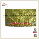 BOPP Film-Laminated Rice, Engrais, Ciment Emballage Plastique PP Woven Bag