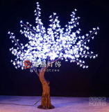 Trees (YHQ672) 높은 쪽으로 2m LED Holiday Decoration Light