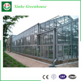 Serre chaude en verre de Multispan pour l'agriculture
