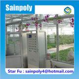 Cultivo galvanizado de vidro de Rosa da estufa do frame de aço de casa verde