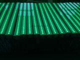 Gegoten Licht, de Achtergrond die van het Stadium 36PCS X bevlekken 10W RGB 3 in 1 LEIDENE LEIDENE van de Invoer Wasmachine van de Muur