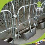 Anticorrosion de Apparatuur van de Varkensfokkerij Populair met Moderne Varkensfokkerij