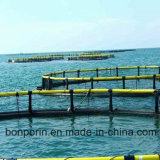 Filato di pesca UHMWPE, filamento del polietilene, fibra del PE