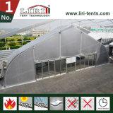 アルミニウムPVCによって曲げられる玄関ひさしTFSのテントの構造の格納庫のテント