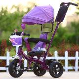 ヨーロッパ規格の2017新しいモデルの鉄骨フレームの赤ん坊の三輪車