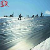 Beste HDPE Geomembrane van de Kwaliteit voor Viskwekerij
