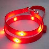 Nuova lenza per cani LED a flasing (MDL152025)