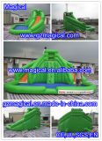 子供および大人(MIC-546)のためのプールが付いている商業巨大で膨脹可能な水スライド