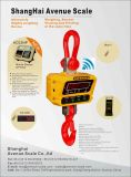 Usar a escala de gruas de pesagem Digital para a indústria