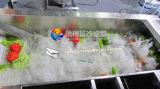 CER anerkannte Multifunktionsgemüsefrucht-waschende Unterlegscheibe-Maschine, Kopfsalat-Kohl-Lauch-waschendes Reinigungs-Maschinen-Gerät (Ozon-Generator wahlweise)