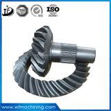 Винтовая зубчатая передача вковки стали нержавеющей стали/углерода OEM и подвергать механической обработке отделки