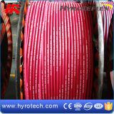 260 gradi per Red Steam Hose