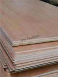 grado combinado madera contrachapada del pegamento BB/CC de la base E1 de 5.2m m Okoume