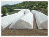 La preuve d'insectes Net, Filet maillant, UV Net (Anti-Bird Anti-Insect Net agricole net en plastique...