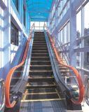 Goma de pasamanos de escaleras mecánicas