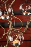 Bola de vidro de cristal para Titular de Tealight