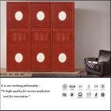 Шкаф шкафа раздвижной двери спальни (ZH5071)