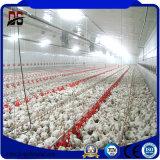 Structure en acier léger préfabriqué ferme de poulet avec Certification TUV