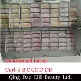 Оптовые выдвижения ресницы плетки Costom индивидуальные корейские ложные Pre дуют с упаковывая коробкой