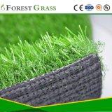 Modelleren van het Gras van de hoogste Kwaliteit het Valse (DOCTORANDUS IN DE LETTEREN)