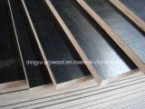 Negro/rojo/marrón Film enfrenta encofrados de madera contrachapada impermeable núcleo Álamo
