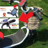 Zwei Räder E-Roller der Rad-faltbarer Mobilitäts-drei