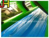 Tropital 숲 주제 수영장을%s 가진 팽창식 물 미끄러짐 활주