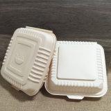 Niedriger Preis-Wegwerfnahrungsmittelbehälter-unzerbrechlicher Verpacken- der Lebensmittelmittagessen-Kasten